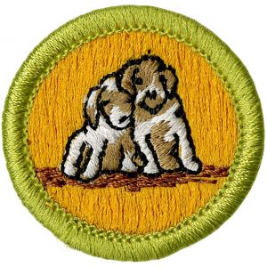Dog Care Merit Badge