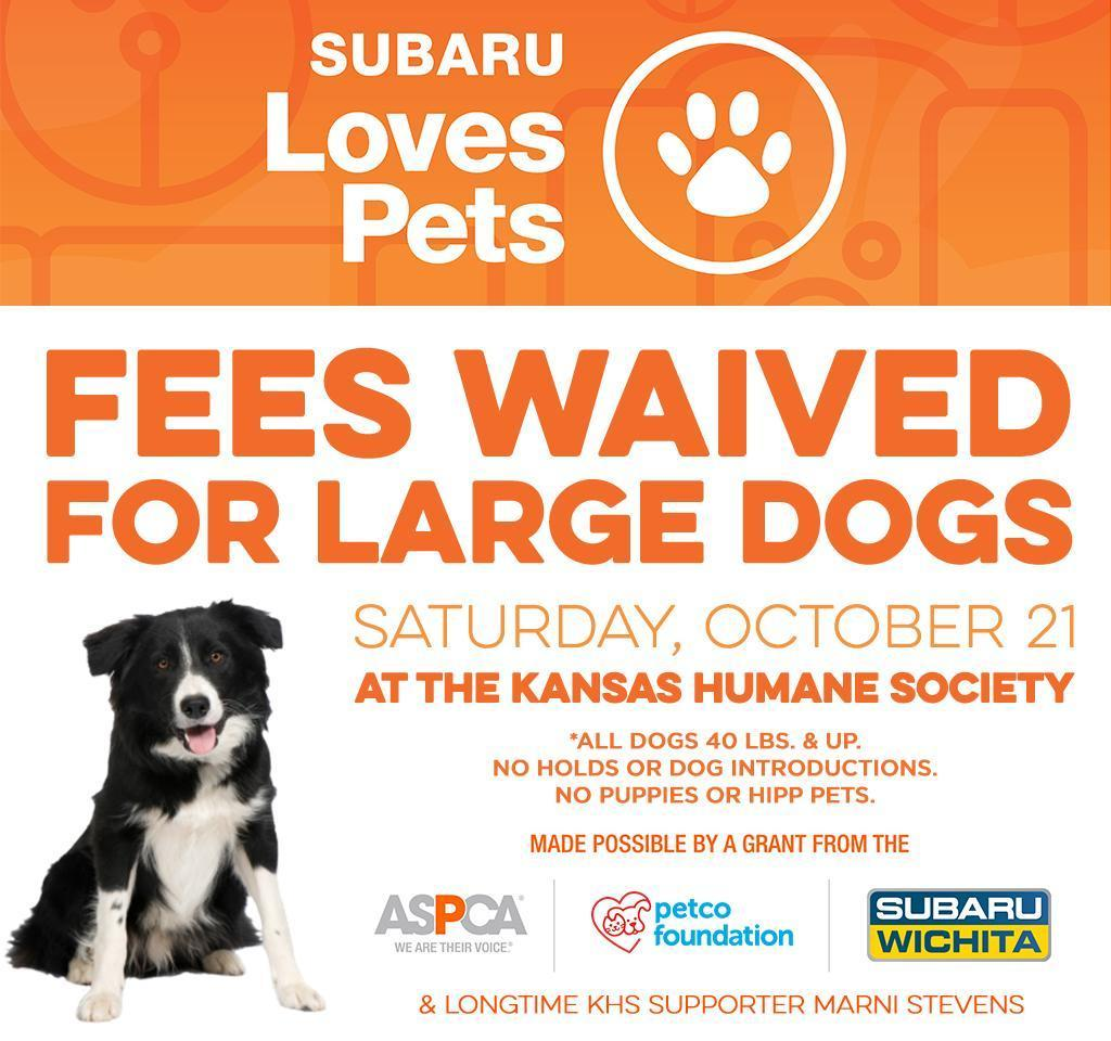 Subaru Loves Pets Event Social