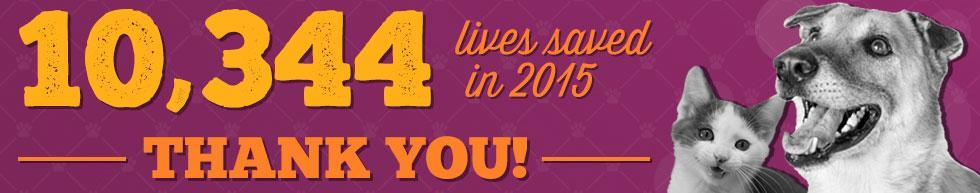 Lives Saved in 2015