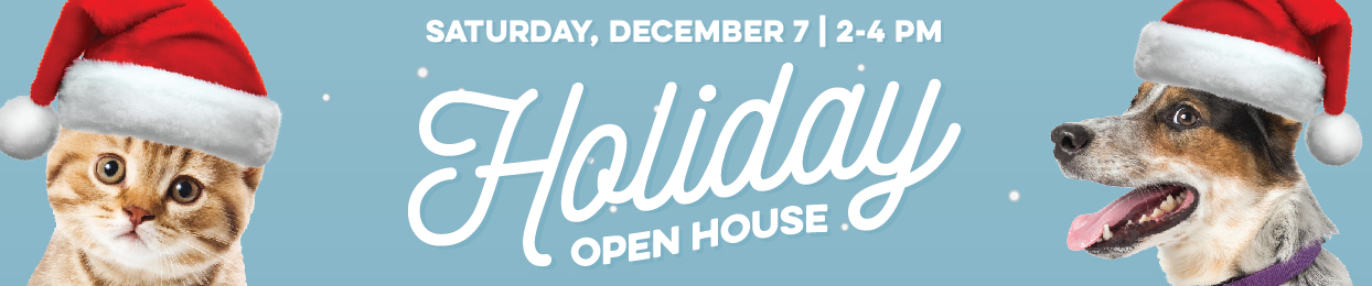 Holiday Open House 2019
